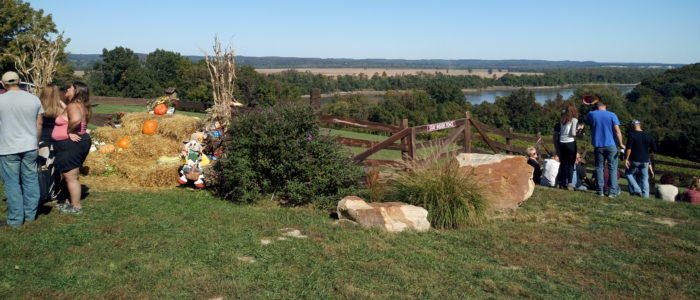 OakGlenn Vineyard & Winery View